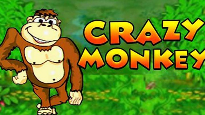 Описание игрового автомата Crazy Monkey